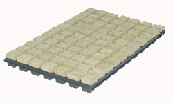 Picture of Grodan Propagation Cubes