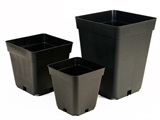 Picture for category Square Pots