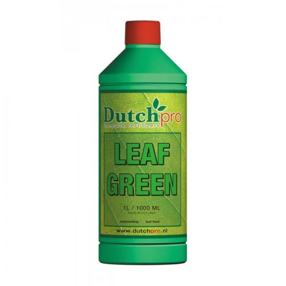 Picture of Dutch Pro Leaf Green