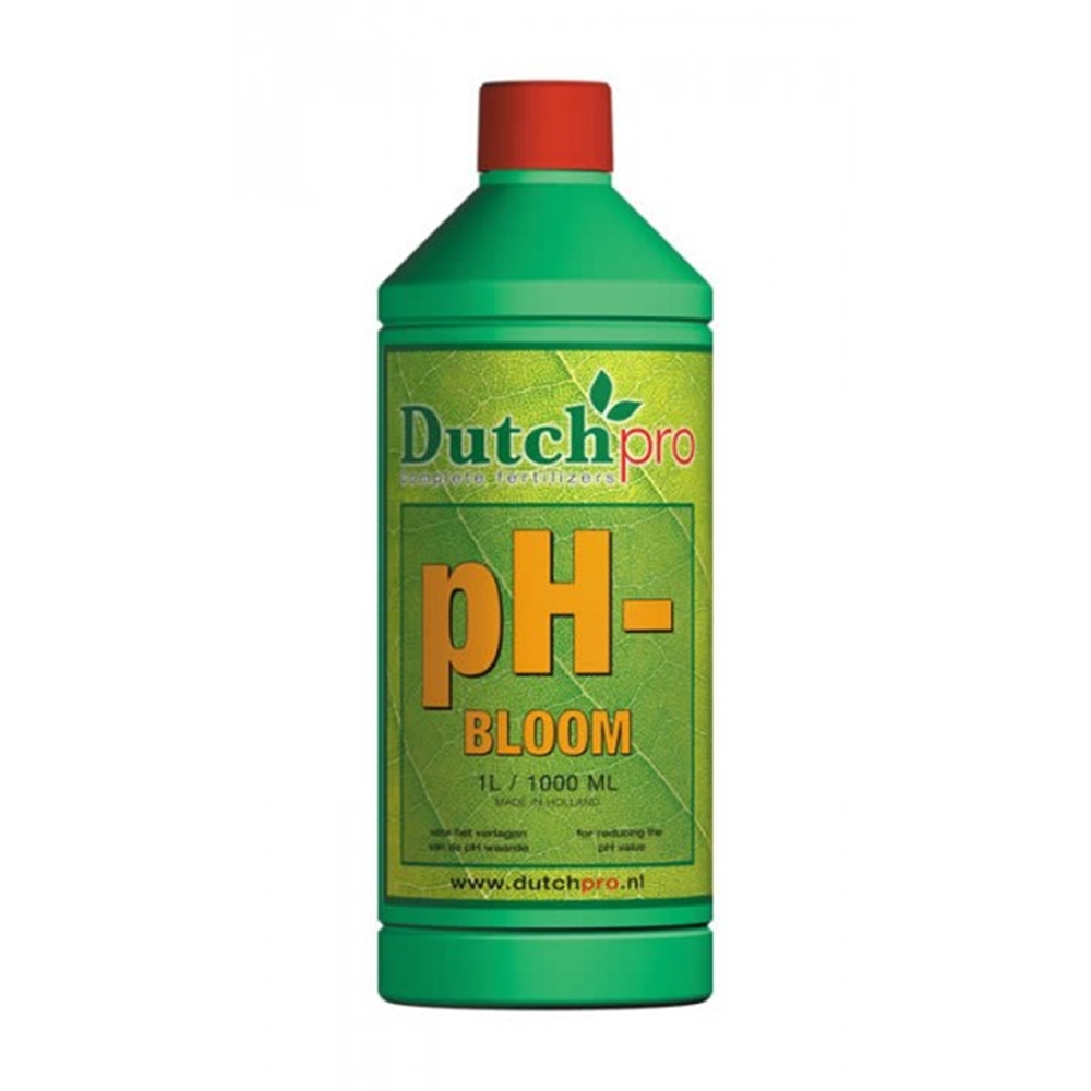 Picture of Dutch Pro Ph- Bloom