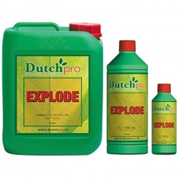 Picture of Dutch Pro Explode