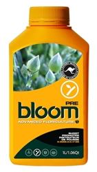 Picture of Bloom Pre