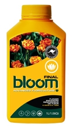 Picture of Bloom Final