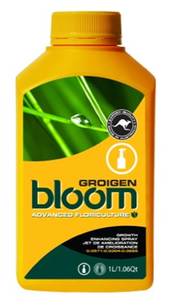 Picture of Bloom Groigen