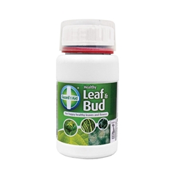 Picture of Healthy Leaf and Bud
