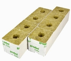Picture of Grodan Transplanting Cubes