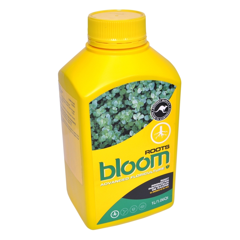 Picture of Bloom Roots